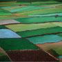Grand Vary Vert (80x65 cm) Acrylique sur toile