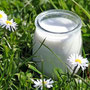 REWE Koll Regional - Milchprodukte von der Weide neben an