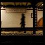 une ombre dans le métro