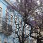 Lisboa la belle, la colorée...