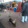 20 februari 2012 - Quisha Chenna op de markt en in de stad