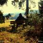 Ein wirklich erholsamer Spaziergang durch die Bergwälder des Jogllandes. Das Leben ist schön.
