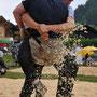 Südwestschweizerisches Schwingfest Morgins 05.07.2009