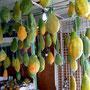 des papayes