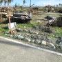 ein weiteres Grab der über 100 Gräber