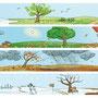 Jahreszeiten | Menschen | Hueber Verlag | 2011
