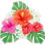南国の花束
