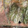Sie sahen am Ende des Weges einen hohen Felsen, der mit seinem Grau aus dem Gelb-braun der Blätter hervorstach. Dann sahen sie das schwarze Loch unten am Felsen – die Höhle.