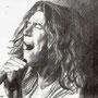 Robert Plant 2010 - Chiara Tomaini