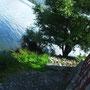 Kissing the lake 2012 - Chiara Tomaini