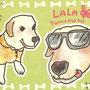 LALA:ラブラドールちゃんの似顔絵。*