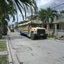 Linien Bus