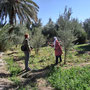 Kasbah Amerhidil Gärten