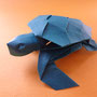 海亀の子/2012.8.5