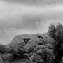 "La imponente ""Piedra del toro""."