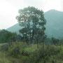 Camino al Quetzaltepec.