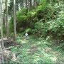 5/6/2008 12:17:40 PM 林道を出発。