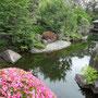 5月の緑 目白庭園