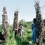 Kinder und Frauen sind oft stundenlang unterwegs, um Brennholz zu sammeln.