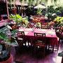 Essen im Garten des Lai Thai