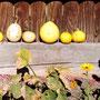 Haus Doppler - Herbst
