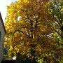 Hinter der Kirche Littau
