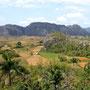 Sierra de los Organos, Valle de Vinales, Pinar del Rio, Kuba - Ais dieser Region stammt der beste Zigarrentabak der Welt