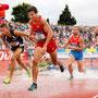 Athlétisme n°4 - Dominique HERGUAIS