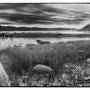 Fjord canadien - Yann MARCHAND