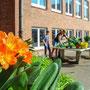 Blumen umtopfen im Orientierungsstufengebäude