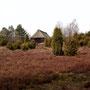 Schafstall in der Heide