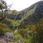 Der Blick öffnet sich zur Werribee Gorge...