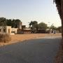 Und dann kamen die Al Maktum Scheichs, bewässerten ein paar Palmen...