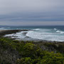 Auf der Great Ocean Road