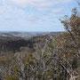 Der Kontrast zwischen Busch im National Park and Wiese außerhalb ist wunderschön
