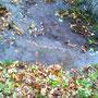 Wenn es in Perm regnet, enstehen überall lustige Flüsschen...