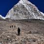 Abstieg vom Kala Pattar mit dem Pumori (7145 m) im Hintergrund