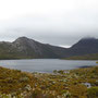 Cradle Mountain in den Wolken