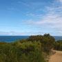 Walk entlang am Ocean: Great!