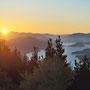 Sonnenaufgang in den Marlborough Sounds - unser Zelt haben wir Dank Verenas Hinweis genau an der richten Stellen aufgebaut!