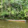 In so einem Boot geht es den Fluss entlang
