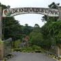 Am nächsten Morgen bleibt Zeit für einen Besuch im Tierpark