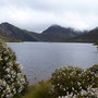 ...zum Cradle Mountain