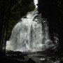 Plötzlich ein Wasserfall hinter den Bäumen!