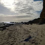 Muscheln suchen und Strandspaziergang