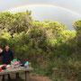 ...für das Abendessen unterm Regenbogen!