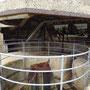 Die alten Befestigungsanlagen des Fort Nepean