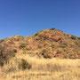 Der Pilanesberg Nationalpark liegt ein bisschen nordwestlich von Pretoria