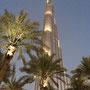 Burj und Palmen