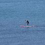 Der neueste Trend: Stand up Paddle Board...